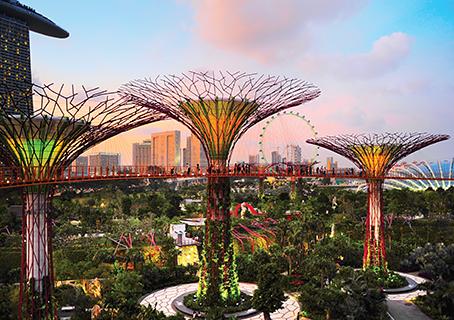 Los árboles electrónicos son enormes estructuras que ofrecen un verdadero espectáculo dentro de todo el verdor y amplitud de los Jardines de la Bahía.